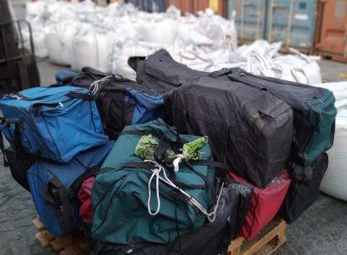 Apreensão de cocaína escala na Bahia e indica estado na rota do crime