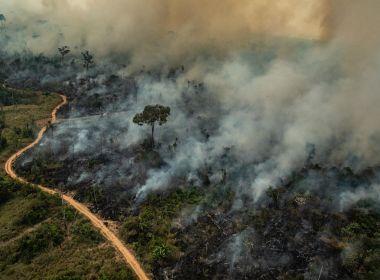 Queimadas na Amazônia sobem 49% em maio na comparação com 2020, aponta Inpe